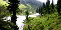 Ferozepur-Nallah-gulmarg-ka