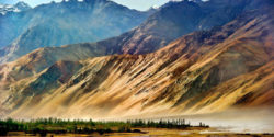 Nubra_Valley_by_alex_hanoko